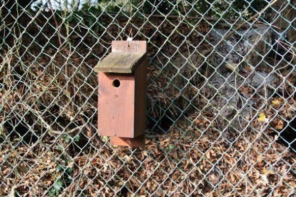Nestkasten voor verschillende soorten vogels